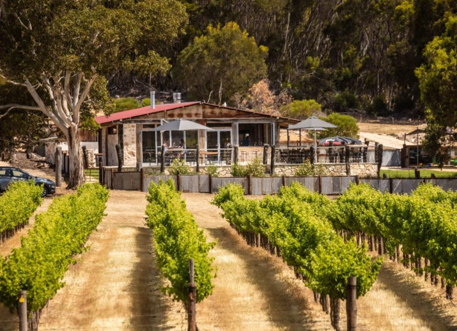 False Cape Wines Cellar Door;Dudley Peninsula Food and Wine Tour