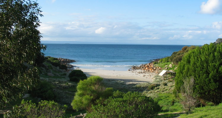 Kangaroo Island luxury accommodation;kangaroo island accommodation; Sea Dragon Lodge; Seafront Accommodation;Pink Bay