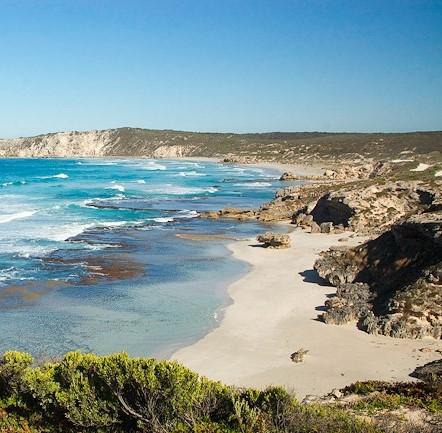 Sea Dragon Lodge; Kangaroo Island Tours; Pennington Bay