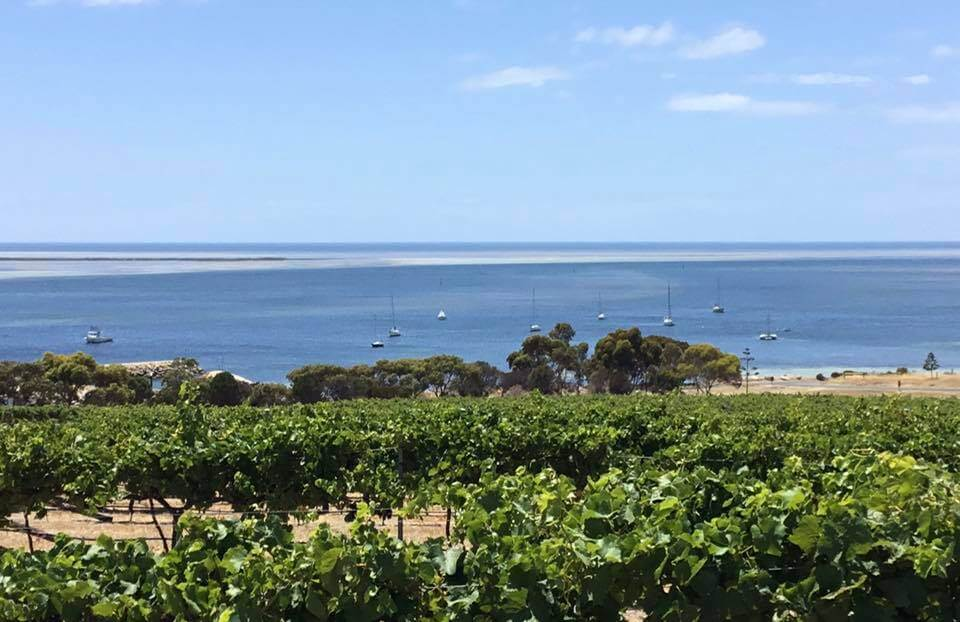 Bay of Shoals Wines;Wineries on Kangaroo Island; Kangaroo Island Food & Wine; Kingscote